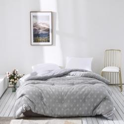 傲蕾良品专版花型埃及棉色织大提花立体冬被加厚保暖柔软贴身被子