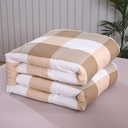 致臻水星家纺无印良品风格水洗棉冬被 春秋被