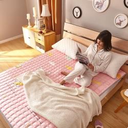 麗諾床墊 2019新款可機洗活性印花床褥