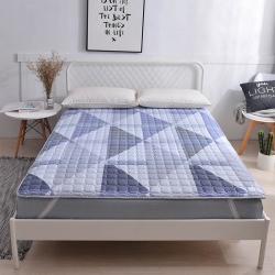 丽诺床垫 2019新款舒适马棉床褥
