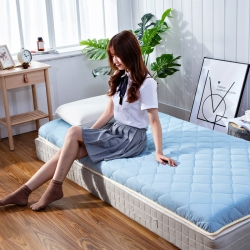 學生素色水洗棉床墊0.9m米床褥子加厚榻榻米可折疊地鋪睡墊