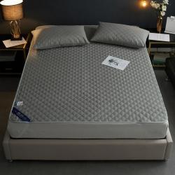 (总)富华家纺 2020新款防水夹棉床垫