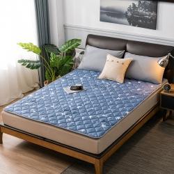 2020新品 亲肤磨毛床垫可机洗床褥子特价床护垫席梦思保护垫