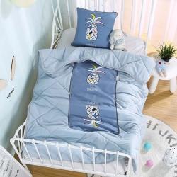 憶家抱枕被 磨毛3D水洗棉絎縫包邊抱枕被 心點菠蘿