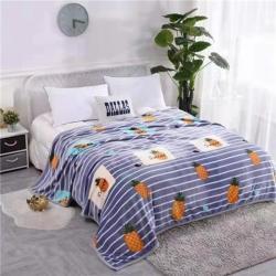 九州星 2020新款260克加厚包邊款毛毯網銷贈品毛毯 菠蘿藍