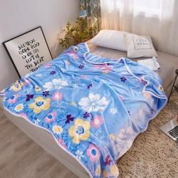 九州星 2020新款260克加厚包邊款毛毯網銷贈品毛毯 秘密花園