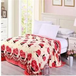 九州星 2020新款260克加厚包邊款毛毯網銷贈品毛毯 一支花