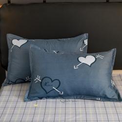 (總4)漫仙閣 2020新款親膚棉蘆薈棉單品枕套一對