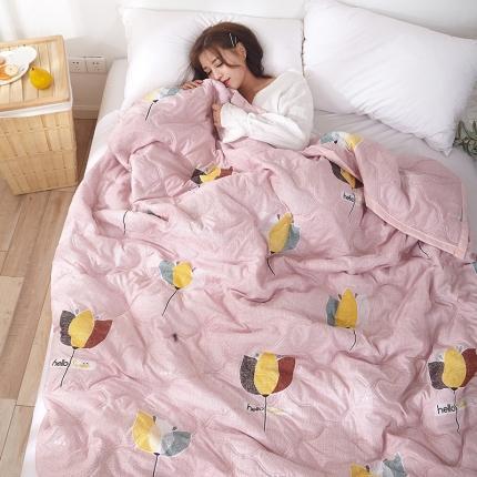 新款水洗棉夏凉被空调被可水洗可折叠印花床上用品