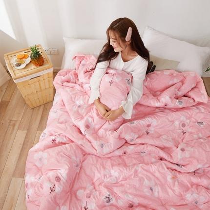 新款水洗棉夏凉被空调被可水洗可折叠印花床上用品 香茗
