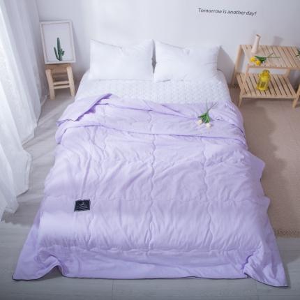 澳玛尼 2020新款水洗棉纯色夏被 藤紫