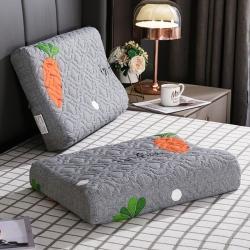 (总)豪选家纺 2020新款印花乳胶枕套一对装
