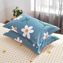(总)卓越家纺 2021新款128*68全棉印花斜纹单枕套