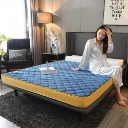 水晶绒绣花记忆海绵立体床垫6/10cm 两个厚度