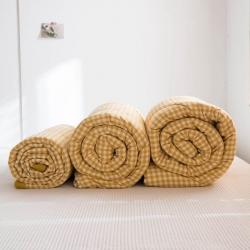 (总)轻奢坊 2020新款全棉色织水洗棉棉花春秋被冬被