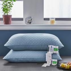 2021新爆款全棉玻尿酸茶多酚二合一护颈枕头枕芯可开票可代发