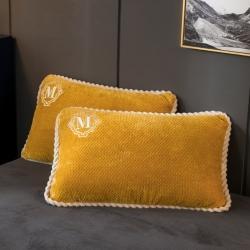 早晨 2021新款贝贝绒法莱绒牛奶绒单枕套系列