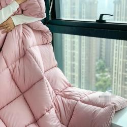 (总)暖生活 2020新款洛世奇鹅绒冬被被子被芯