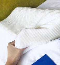 彩烨家纺 希尔顿乳胶枕枕头枕芯一对2只