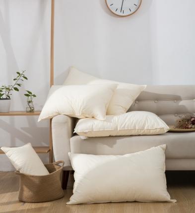 (总)子和 2020新款60水洗棉A类枕头