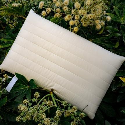 (总)子和 2021新款全棉记忆低反弹枕