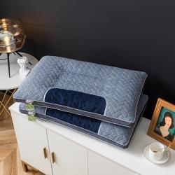 仁宇枕业 2021新款新款阳离子乳胶功能枕头枕芯