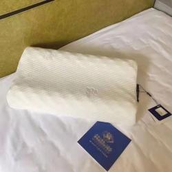 (总)娜印 爆款希尔顿乳胶枕天然乳胶枕芯 大量现货 一件代发