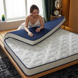 乳胶床垫软垫加厚榻榻米家用双人租房专用席梦思1.5/1.8床