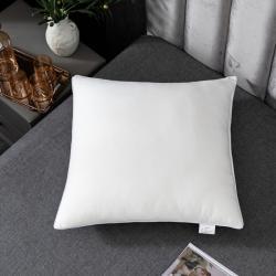 方芯枕芯枕头沙发婚庆套件大靠垫芯50、60、65、60*80