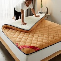 (总)棕康床垫 2021新款羊羔绒床垫