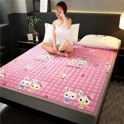 (总)东宇床垫 2021新款水晶绒印花床垫
