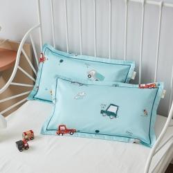 (总)荷马之梦 醇净系列-60长绒棉枕套