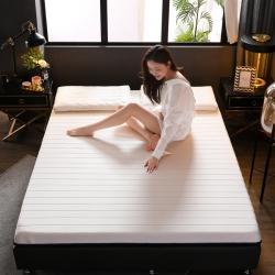 (总)富威堡家纺 2021新款乳胶针织床垫透气6cm