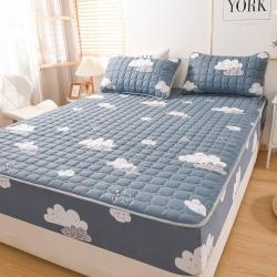 (总)雯豆2021新款加厚磨毛夹棉床笠直播全包床垫保护套