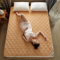 (总)子鹏床垫 2021新款加厚羊羔绒床垫