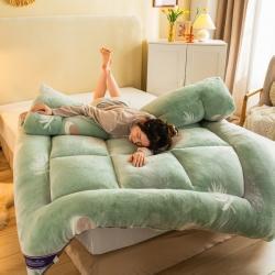 (总)予春坊家纺 2021新款魔法绒印花纯色床垫雪花绒