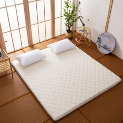 防水防潮榻榻米床垫软垫折叠地铺睡垫懒人床地垫家用垫子 贵族白