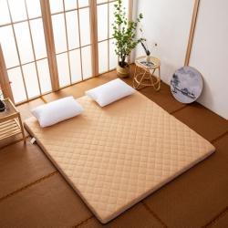 防水防潮榻榻米床垫软垫折叠地铺睡垫懒人床地垫家用垫子 咖色