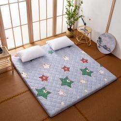 防水防潮榻榻米床垫软垫折叠地铺睡垫懒人床地垫家用垫子快乐空间