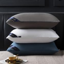 (总)一生颜 2021新款希尔顿枕芯
