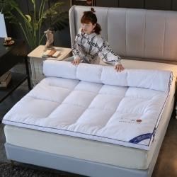 (总)缦卡琳 2021新款加厚磨毛多功能床垫学生床垫