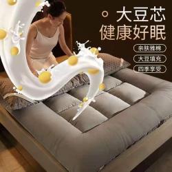 (总)鸿图水星大豆纤维床垫成人款