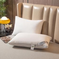 (总)头等舱 2021新款全棉A类大豆抗菌星级枕芯