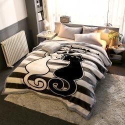 (总)好艺佳 2021新款大版拉舍尔毛毯学生毯4斤–8斤