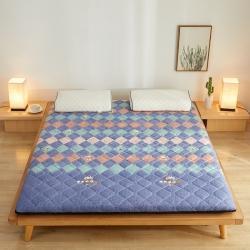 (总)99床垫 2021新款磨毛印花床垫