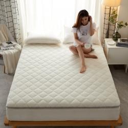 (总)吉欧力 2021新款羊羔绒床垫