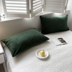 (总)例外Home2021新款天鹅绒四件套系列-枕套
