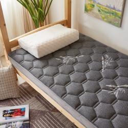 学生宿舍单人加厚床垫软垫家用乳胶垫被褥子铺底双人租房专用地铺