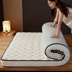 (总)艾尚床垫 (专版花型)加厚加绒乳胶记忆海绵牛奶绒床垫