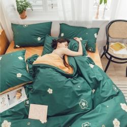 (總)萊登卡奴 2019新款棉加絨系列四件套床單款